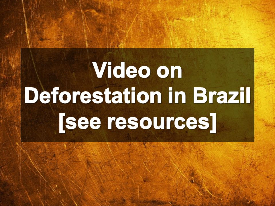 Video on Deforestation in Brazil [see resources]